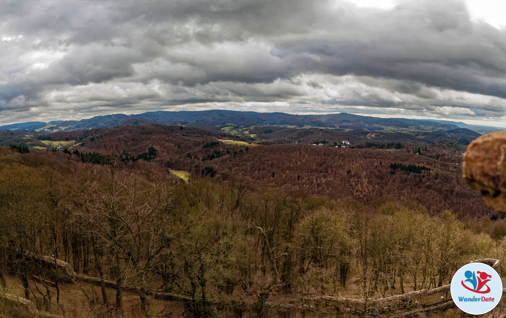 20170305 WD Odenwald